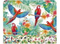 prostírání plastové, PTÁCI 43,5x28,5cm 4 dekory - mix variant či barev