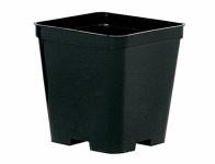 Květník STOP QUADRO plastový černý 10x10cm