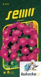Semo Astra čínská - Průhonický trpaslík šarlatový 0,3g
